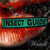 The Insect Guide DPR004 Wasted